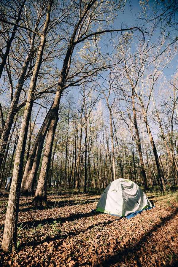 six_creepy_tales_national_park_quest_mammoth_cave_camping
