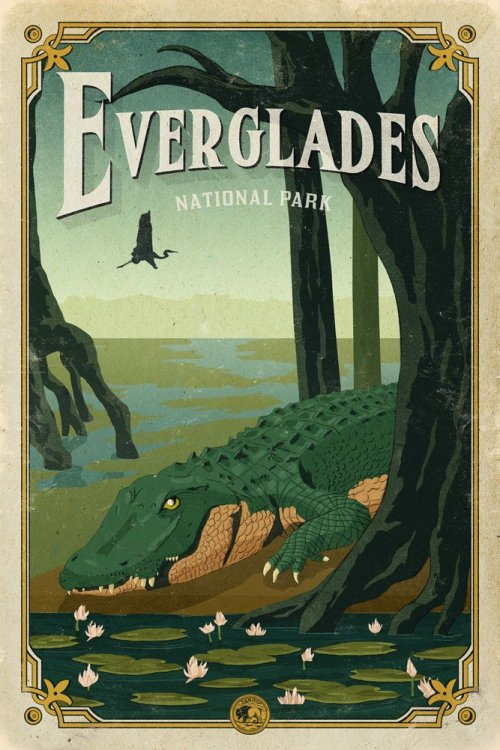 manatee_alligator_love_story_everglades_poster_national_park_quest