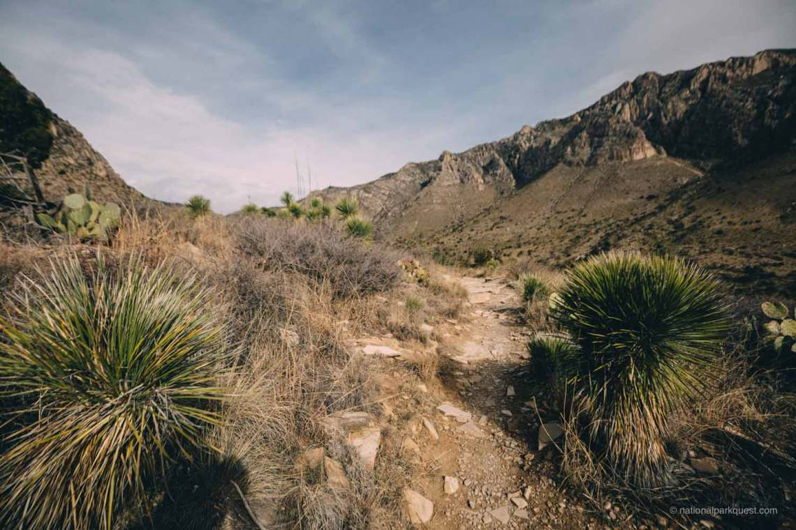 guadalupe_mountains_national_park_guadalupe_peak_trail