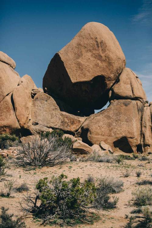 joshua_tree_unique_shapes_boulder_shadows