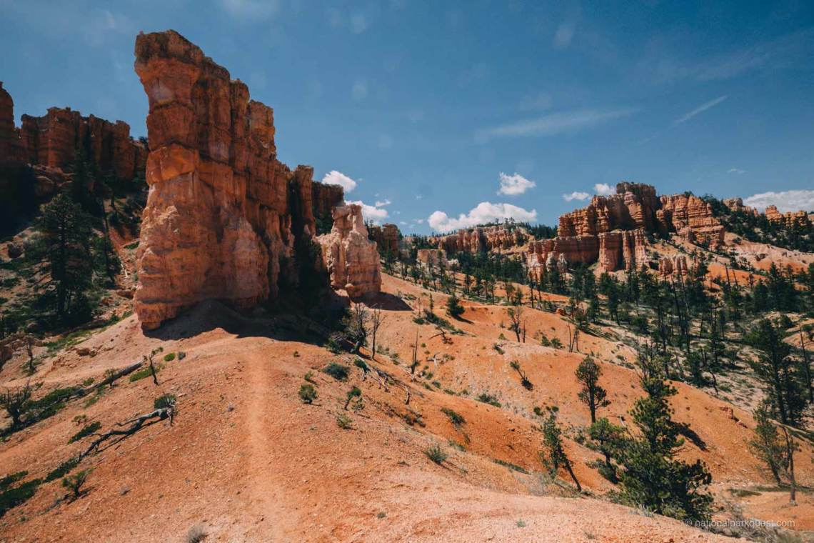 bryce_canyon_fairyland_trail_wonder