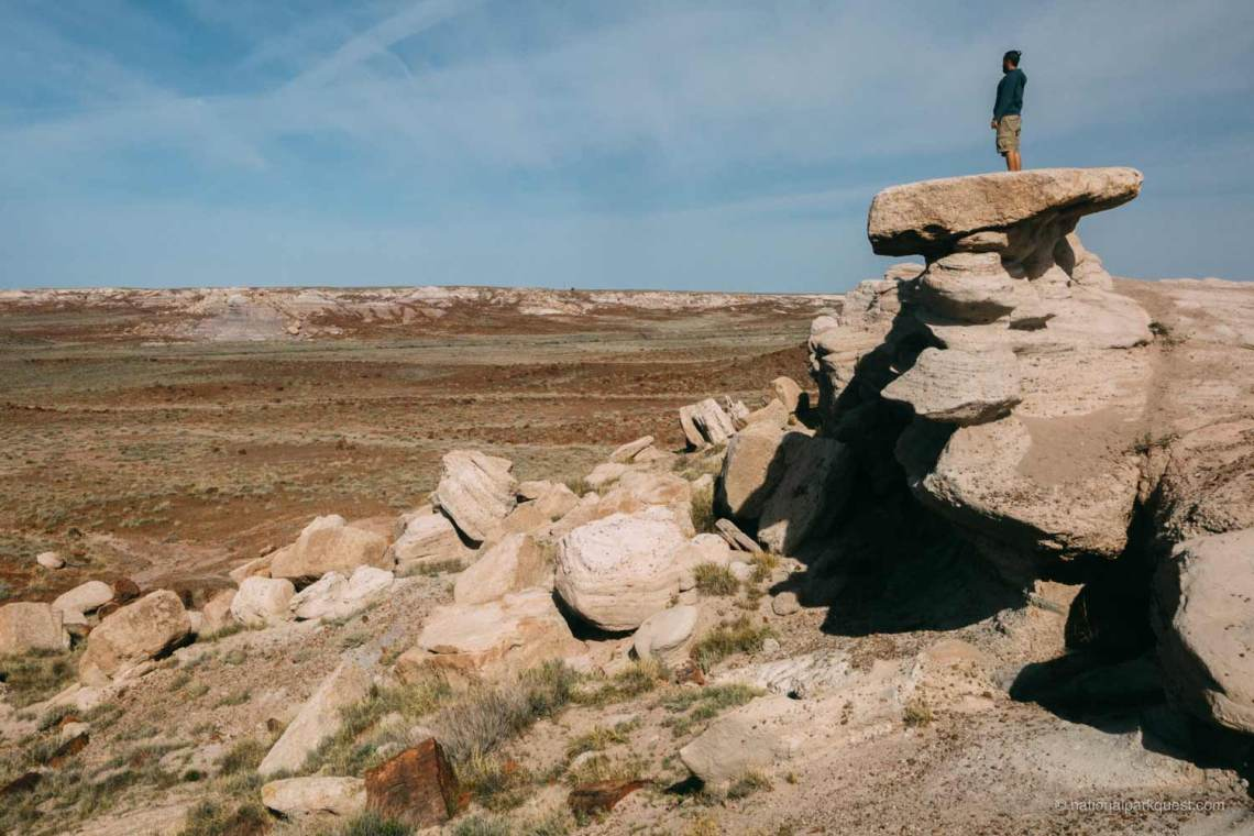 petrified_forest_national_park_voice_echo_andres_standing