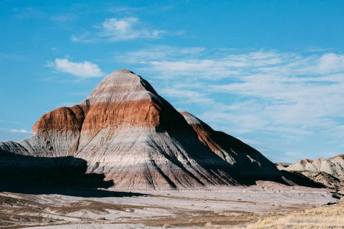 petrified_forest_national_park_voice_echo_trees_geology