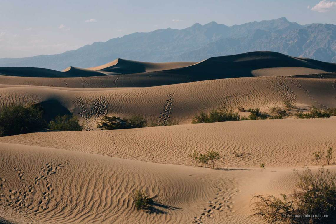 for_those_live_death_valley_footsteps