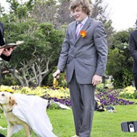 California Allows First-Ever State Recognized Human-Animal Marriage