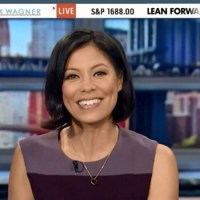 "MSNBC Anchor Resigns; Admits to Spreading ""Lies on Behalf of Obama"""