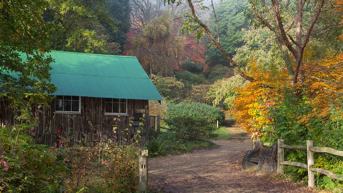 The Wilfrid Boutique Farmhouse The History Of Winkworth Arboretum National Trust