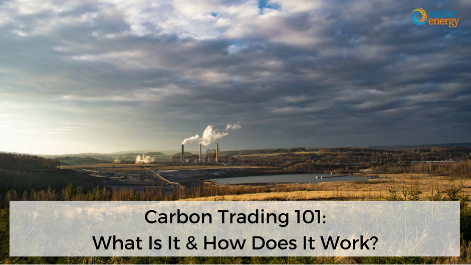 Carbon Trading 101 What Is It  How Does It Work? NativeEnergy