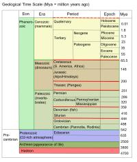 worksheet. Geological Time Scale Worksheet. Carlos Lomas ...