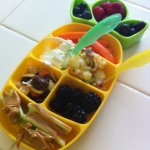 Dr. Sears Nibble Tray by Zak: Product Review