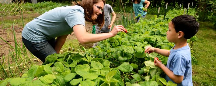 food_GardenGrant11_710_285