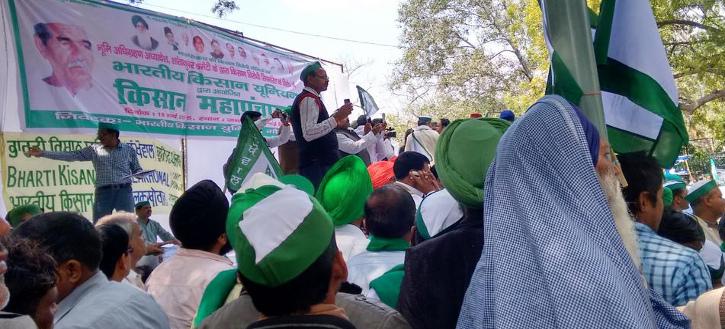 gmo-India-Farmers-anti-gmo-Demonstration-02_725_329