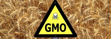 Denied: Lawmakers Fighting to Hide GMO Ingredients Nationwide