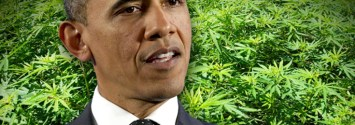 Obama Hints at Federal Marijuana Reform