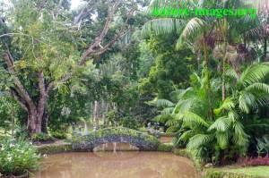 Summit Botanical Garden Panama