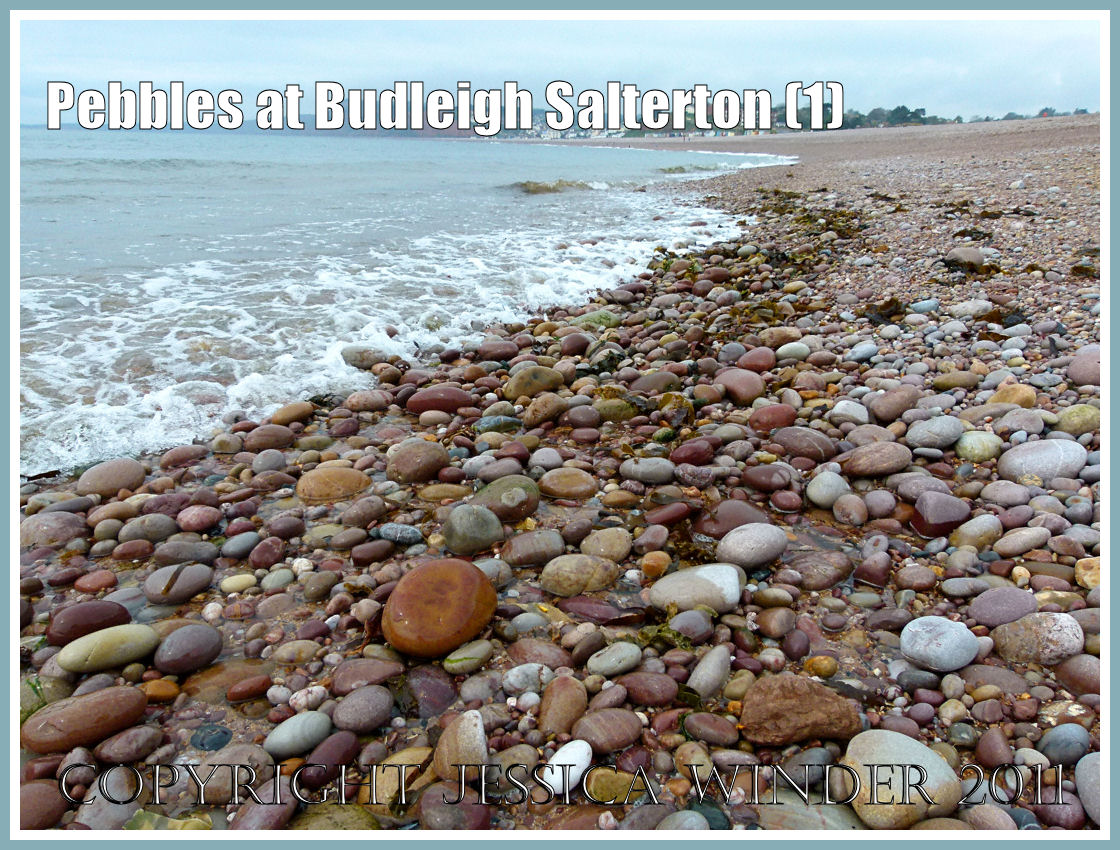 Bed And Breakfast Budleigh Salterton Pebbles At Budleigh Salterton Part 1 Jessica S Nature Blog
