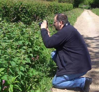 Beyond Hooper's Hypothesis: hedgerow survey handbook updated