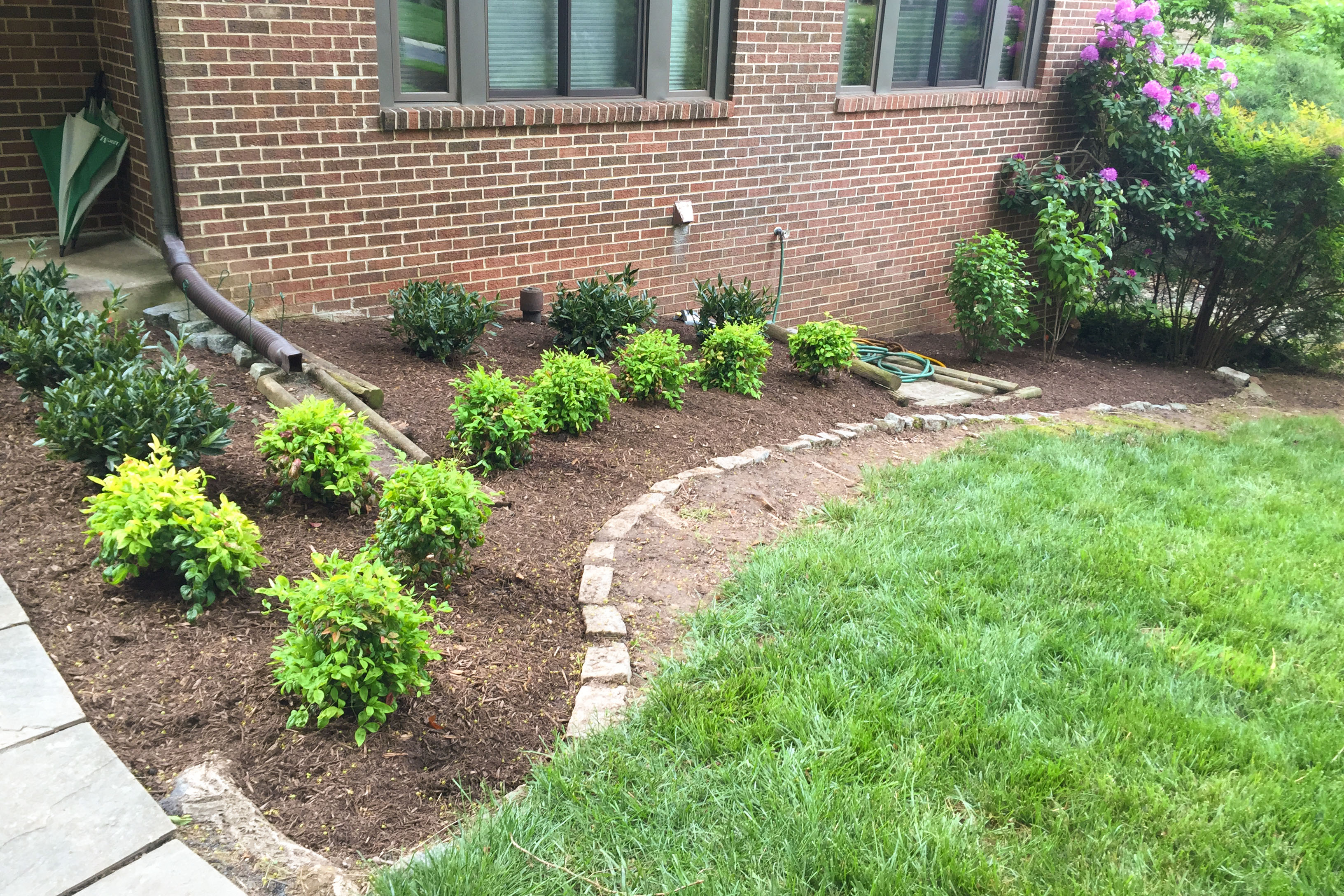 Backyard Clean Up Bethesda Rockville Yard Clean Cleanup Lawn Care And Hardscape