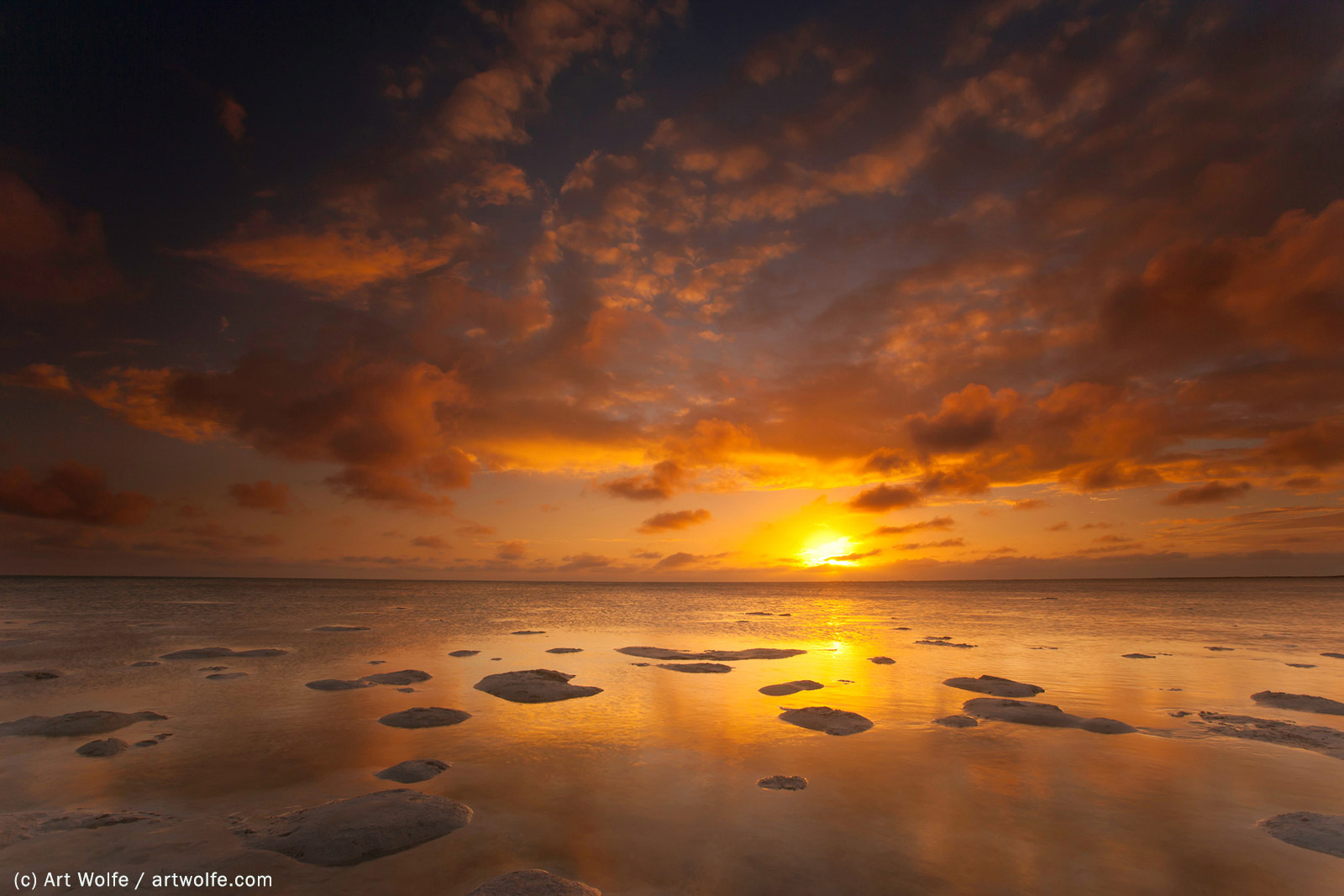 Art Wolfe Photo Tours Art Wolfe How Horizon Placement Affects Depth Nature Ttl