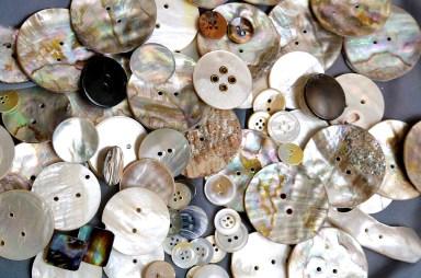gumbi Nautilus nakit