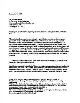 Letter from Small Businesses and Other Organizations to the CFPB in