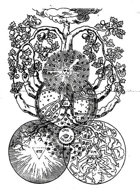 el-arbol