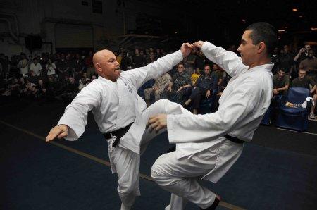 Karate Twist Punch