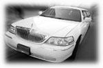 האתר של הנהג הישראלי Logo
