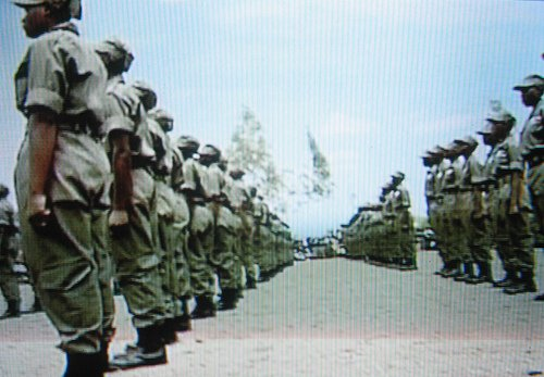 More than 80 000 youth militia, war veterans and army commanders will be deployed across the country to ensure victory for President Robert Mugabe and Zanu PF