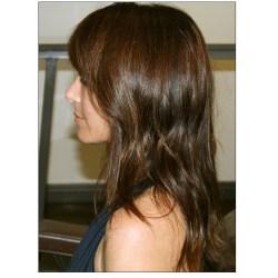 Hair Color Chocolate Brown Ideas For Brutes Dark Black Colour Rej Dye Revlon