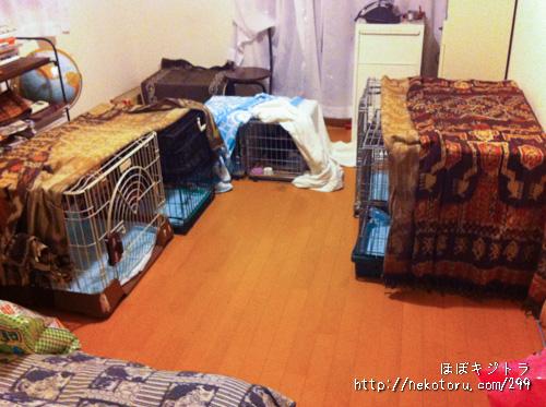 急造!子猫部屋