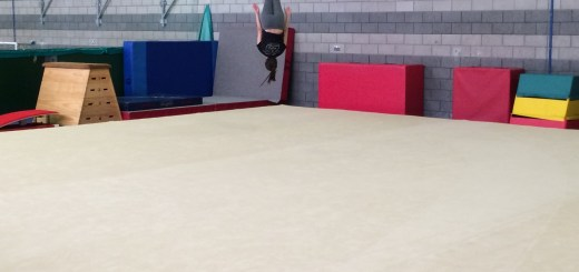 eidilh-tries-out-the-new-sprung-gymnastics-floor-at-gracemount-leisure-centre