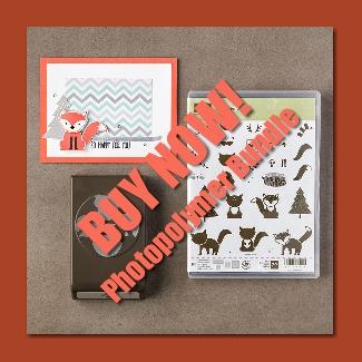 Foxy Friends Buy Now-002