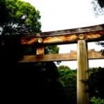 木の鳥居と鎮守の森
