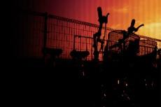 夕焼けと自転車の写真素材