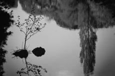 scenery307-3