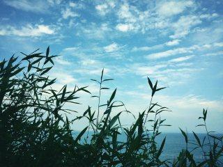 【高解像度】静かな海辺の風景
