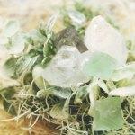 【高解像度】観葉植物と魚眼石(アポフィライト)(3パターン)
