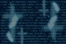 bg-pattern001_1