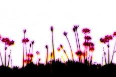 repeat-flower029_2