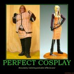 perfect-cosplay-perfect-cosplay-fat-ugly-difference-demotivational-poster-1244957227