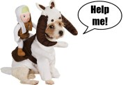 New Star Wars Banthan And Tauntaun Dog Costumes | Car ...