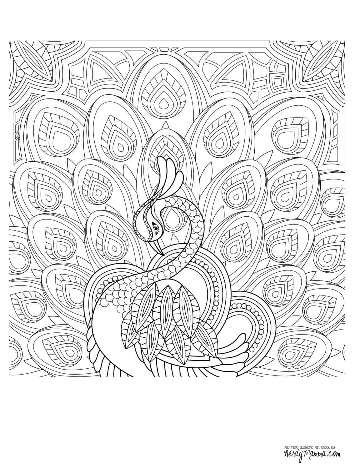 adult coloring books bodpi