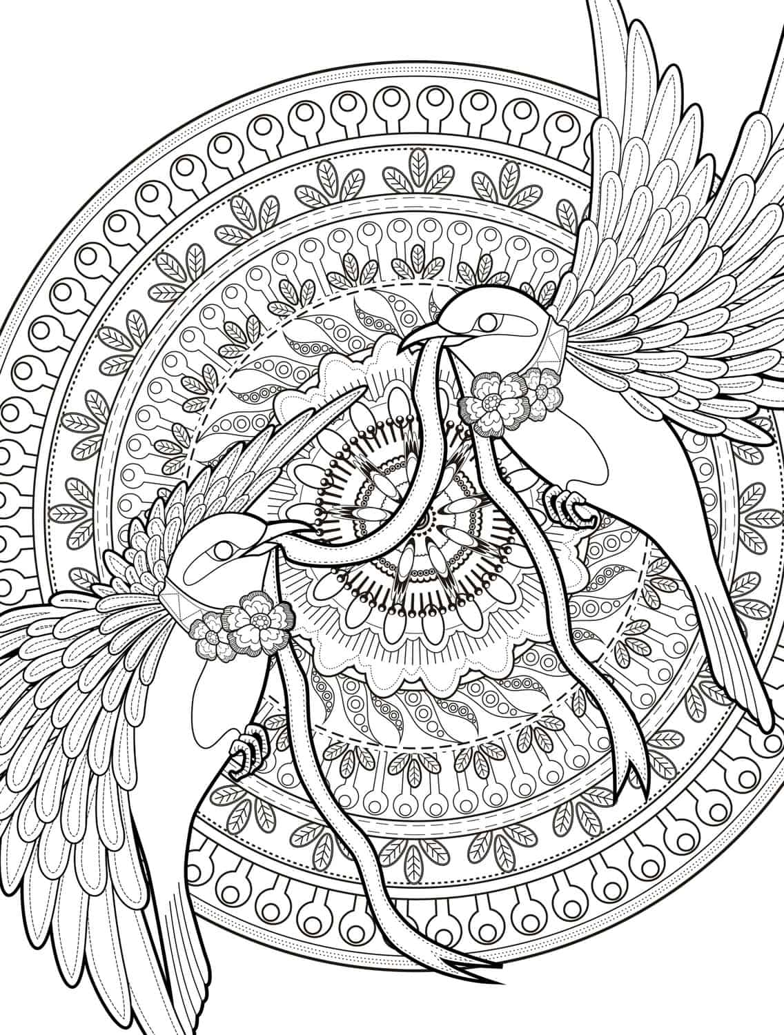 Free downloadable coloring pages for adults -  Adult Coloring Pages With Birds Free Downloadable Web Download