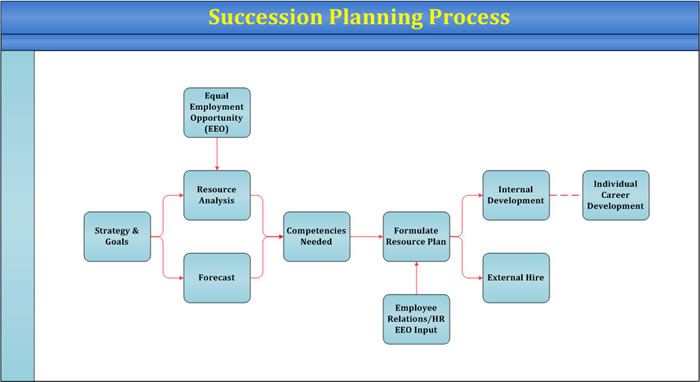 succession planning template - succession planning template