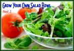 Fresh baby greens salad and tomatoes, salad bowl