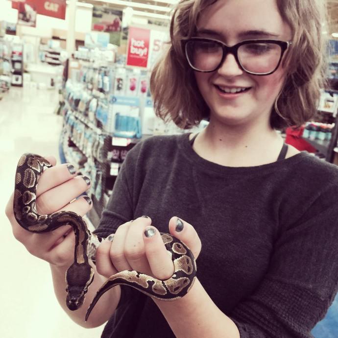 Thanks no thanks snakesofinstagram snakes ballpython petstore