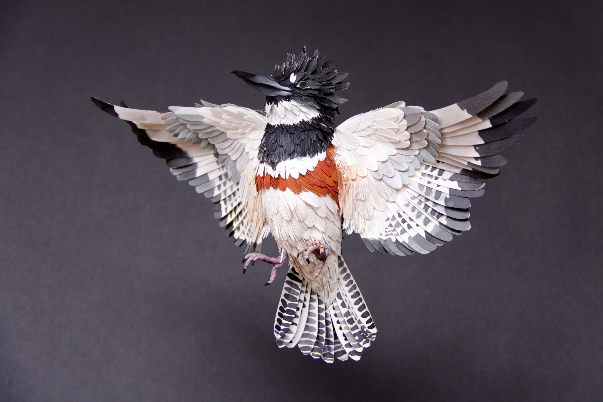 Paper Bird Sculpture Unbelievable Paper Birds Sculptures By Diana Beltran Herrera