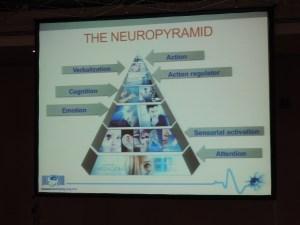 Dr. Jaime Romano - The Neuropyramid