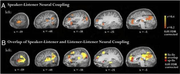 neural coupling How Does Writing Affect Your Brain?
